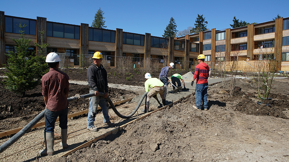 Pouring the concrete path, all hands working together